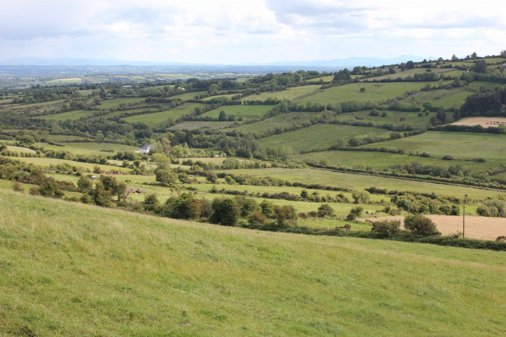 Tipperary farmland